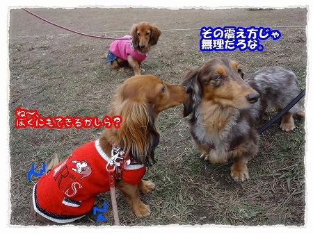 2012_11_14_4(修整1)