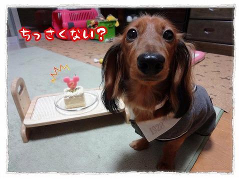 2012_10_14_3.jpg