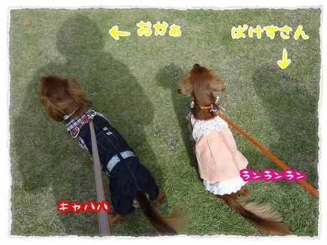 2012_10_15_4.jpg