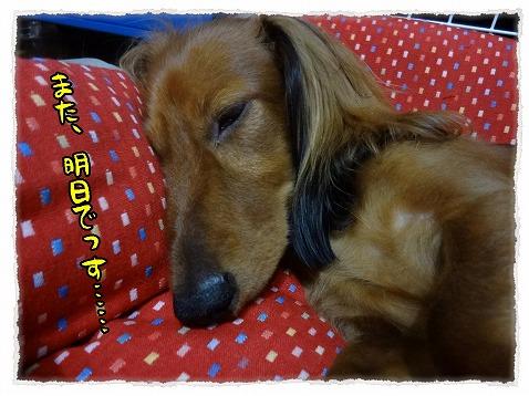 2012_10_16_1.jpg