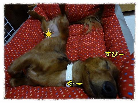 2012_10_16_2.jpg