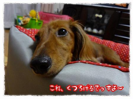 2012_10_17_3.jpg
