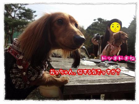 2012_10_18_2.jpg