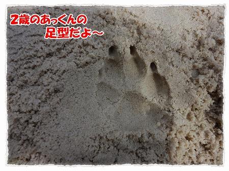 2012_10_18_4.jpg