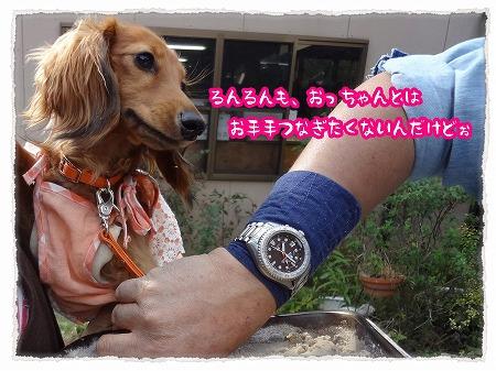 2012_10_18_5.jpg
