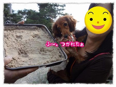 2012_10_18_6.jpg