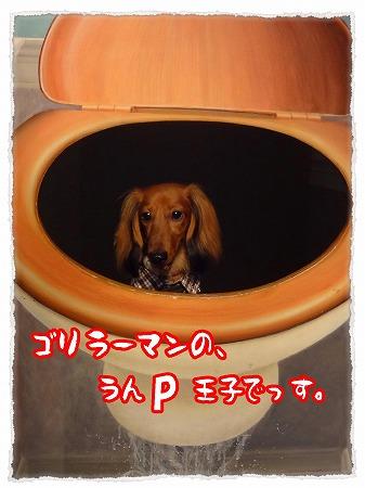 2012_10_19_4.jpg