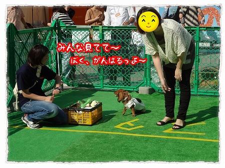 2012_10_1_4.jpg