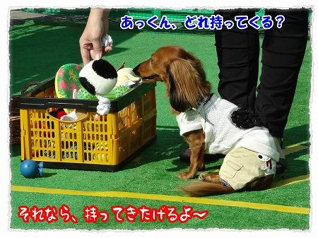 2012_10_1_5.jpg