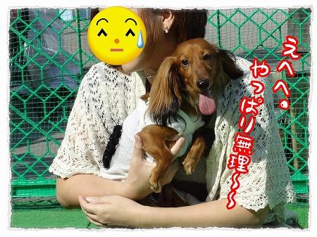 2012_10_1_6.jpg