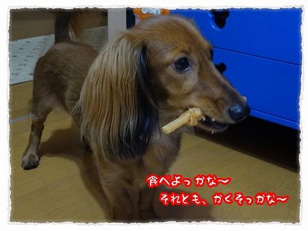 2012_10_21_3.jpg