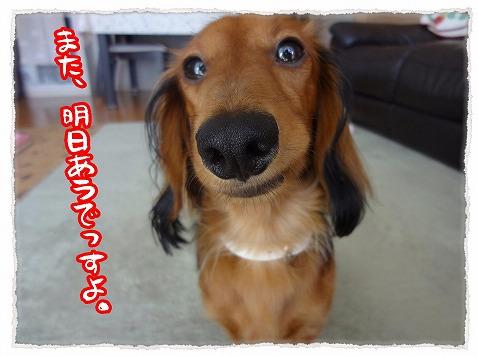2012_10_22_1.jpg