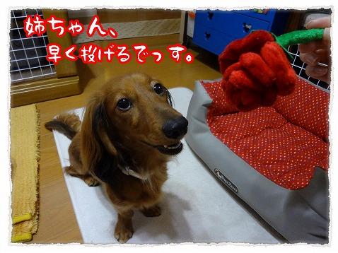 2012_10_23_1.jpg