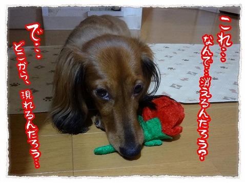 2012_10_23_3.jpg