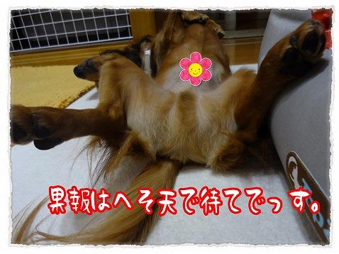 2012_10_24_4.jpg
