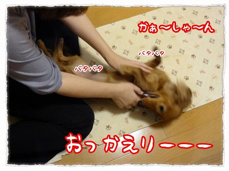 2012_10_25_1.jpg