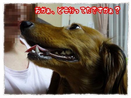 2012_10_25_2.jpg