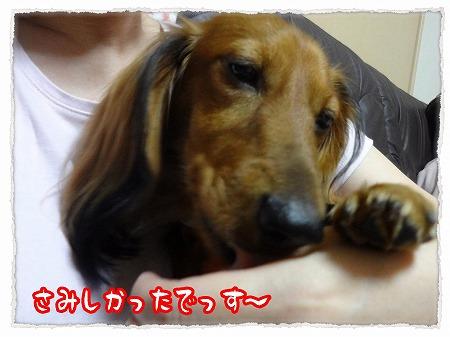 2012_10_25_3.jpg