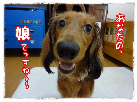 2012_10_26_3.jpg