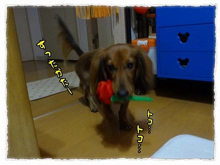 2012_10_27_1.jpg