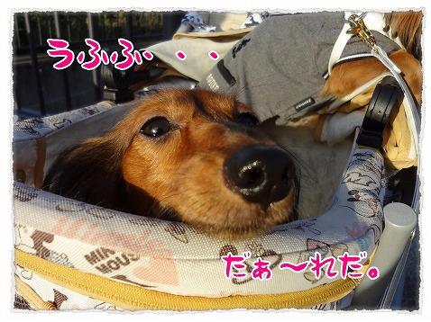 2012_10_28_1.jpg