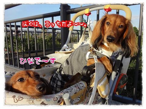 2012_10_28_2.jpg
