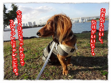 2012_10_29_1.jpg