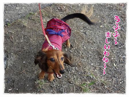 2012_10_29_2.jpg