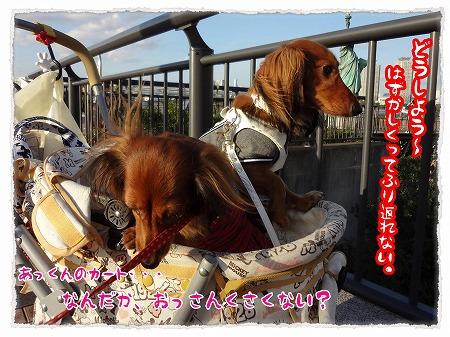 2012_10_29_3.jpg