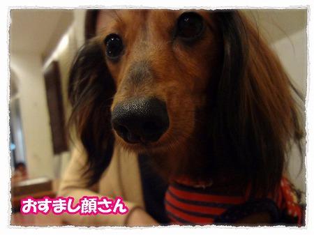 2012_10_30_3.jpg