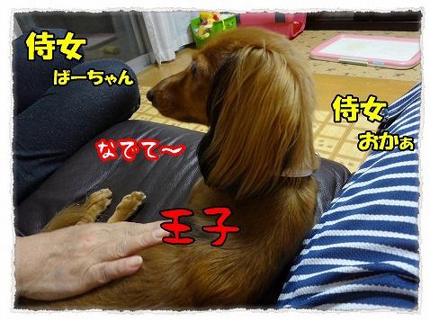 2012_10_4_1.jpg