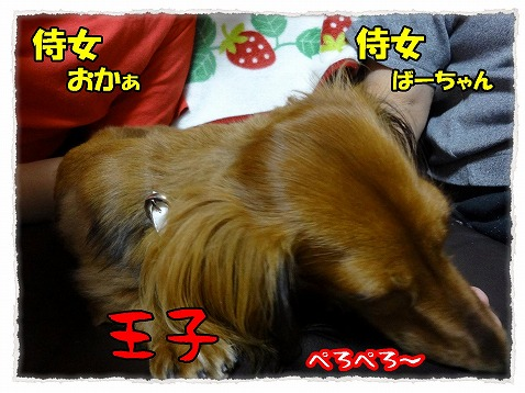 2012_10_4_2.jpg