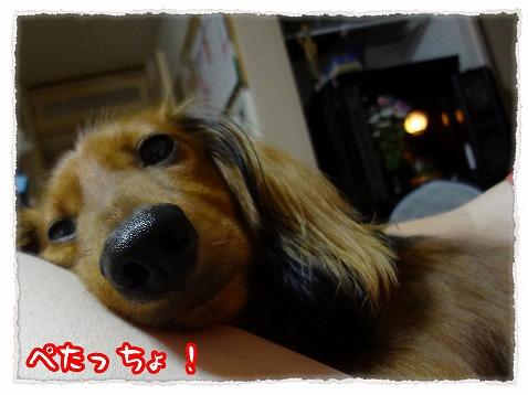 2012_10_4_3.jpg