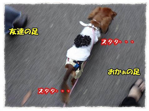 2012_10_4_4.jpg