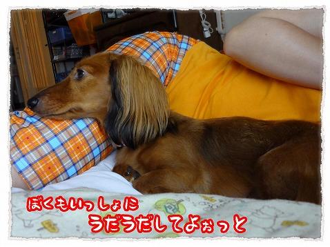 2012_10_6_2.jpg