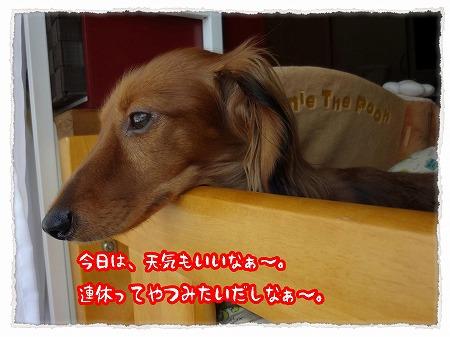 2012_10_7_1.jpg
