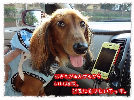 2012_10_7_7.jpg