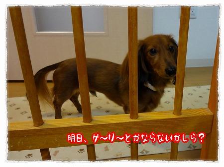 2012_10_8_1.jpg
