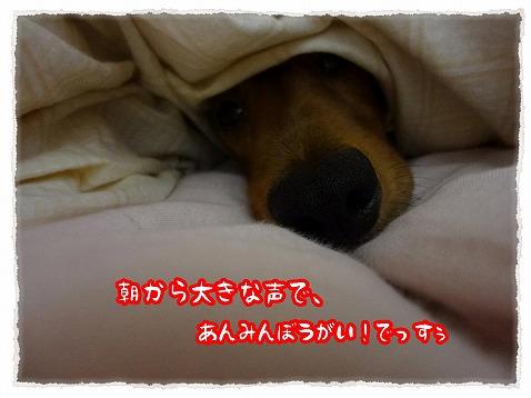 2012_11_13_12.jpg
