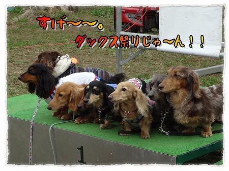 2012_11_14_2.jpg