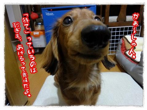 2012_11_18_3.jpg