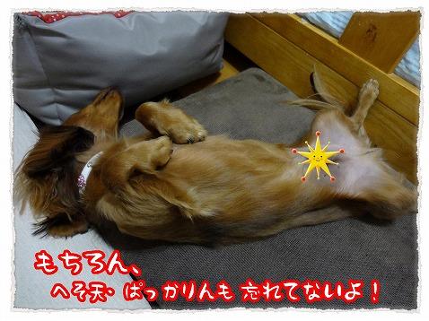 2012_11_21_3.jpg
