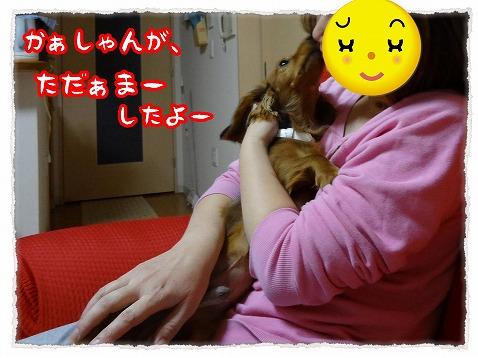 2012_11_22_1.jpg