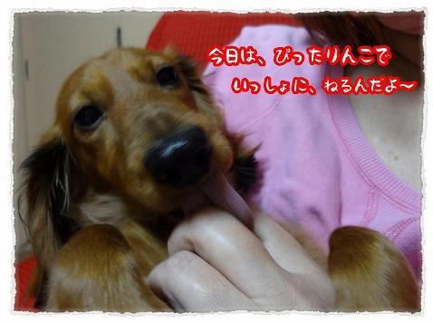 2012_11_22_2.jpg
