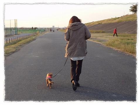 2012_11_25_5.jpg