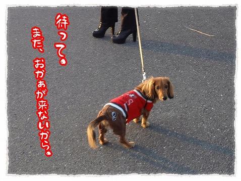 2012_11_25_6.jpg