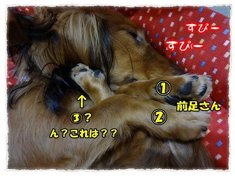 2012_11_3_2.jpg