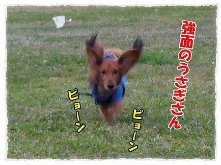 2012_11_7_1.jpg