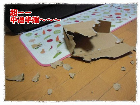 2012_11_7_8.jpg