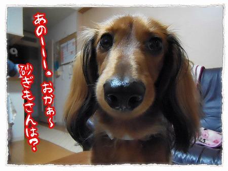 2012_11_9_7.jpg
